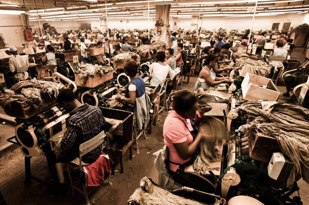 Handmade cigar production, process. Shopfloor of Tabacalera de G